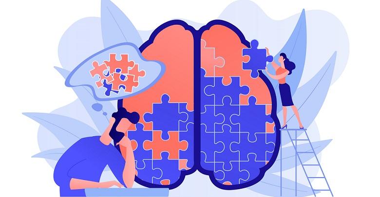 مغز و پازل